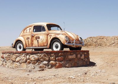 Outback beetle