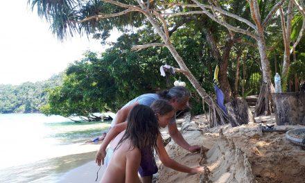 Monkey beach oder offroad durch den Dschungel