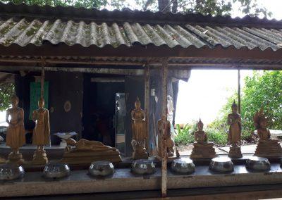 choose a buddha