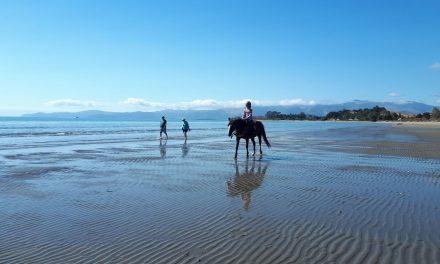 Die Mädels und die Tiere der Golden Bay