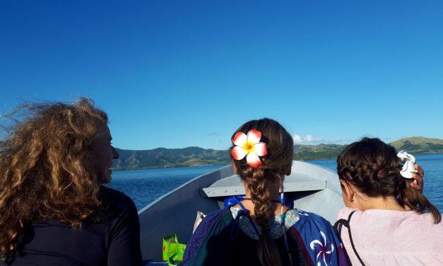 Besuch in der Südsee